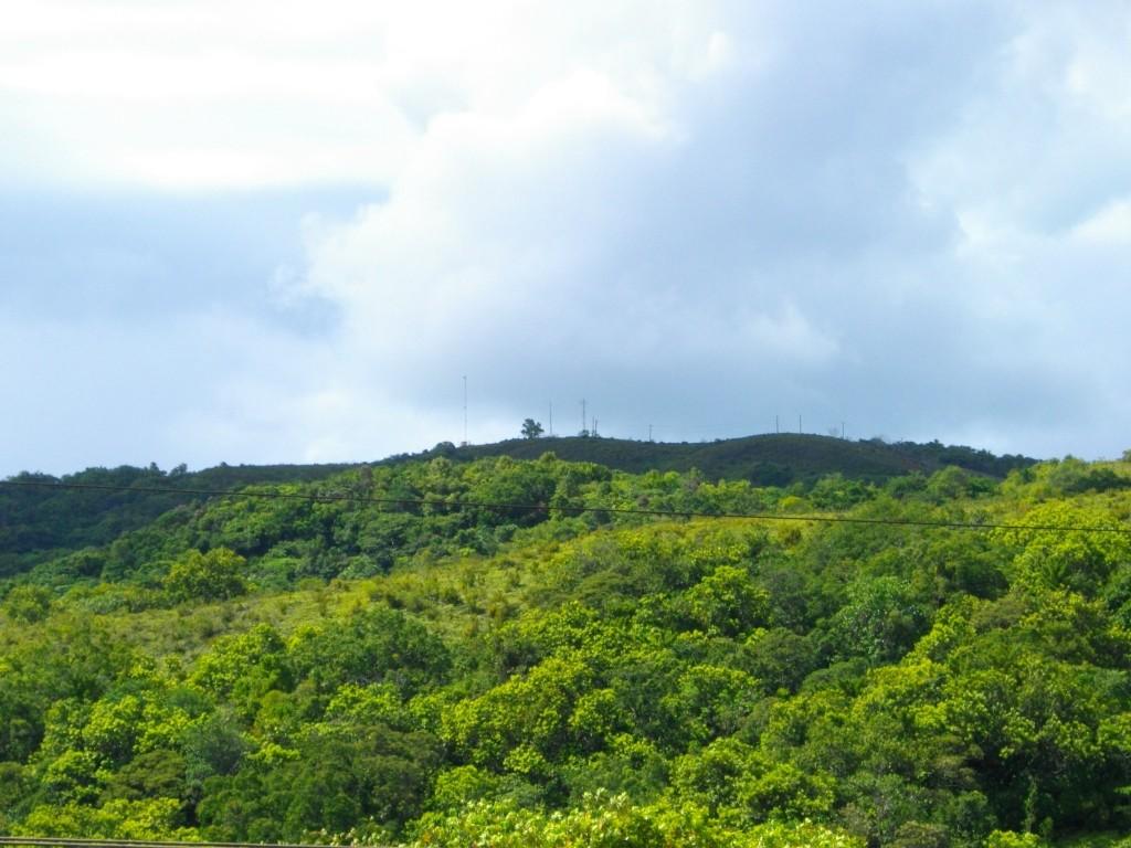 Mount_Ngerchelchuus
