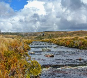 Heaphy_Track_River